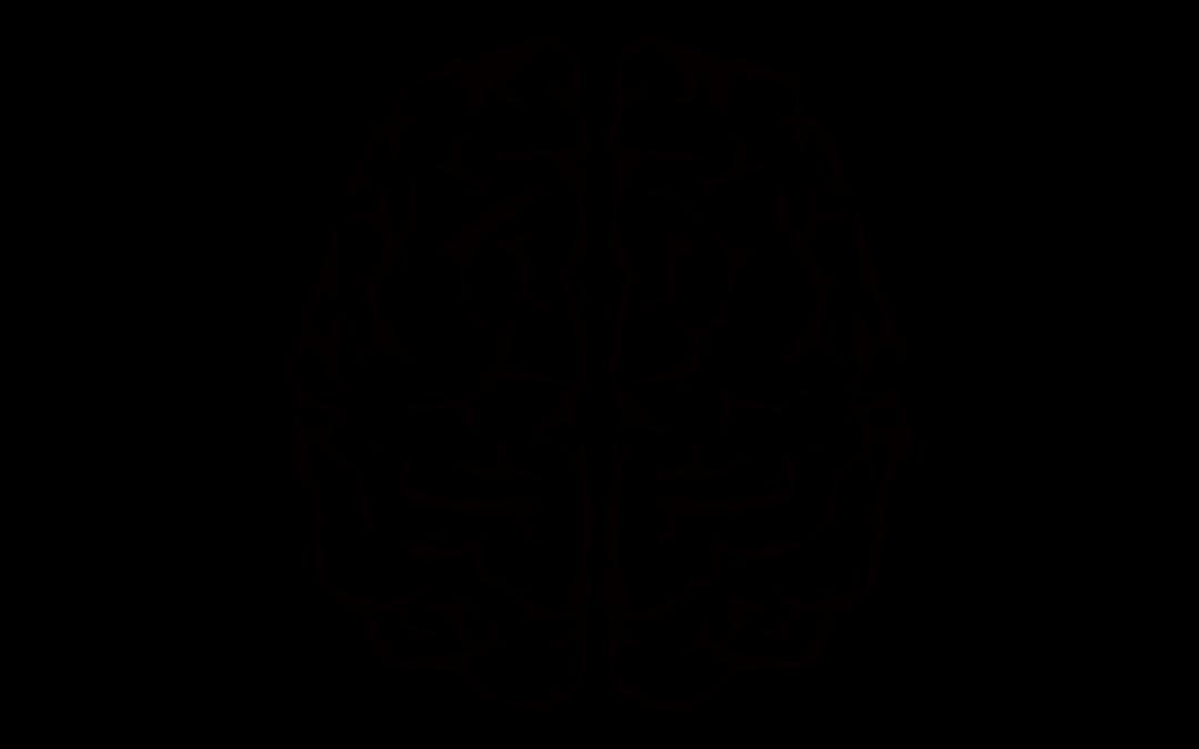 Χτίζοντας έναν καλύτερο εγκέφαλο: Ενίσχυση του διανοητικού σας μυός